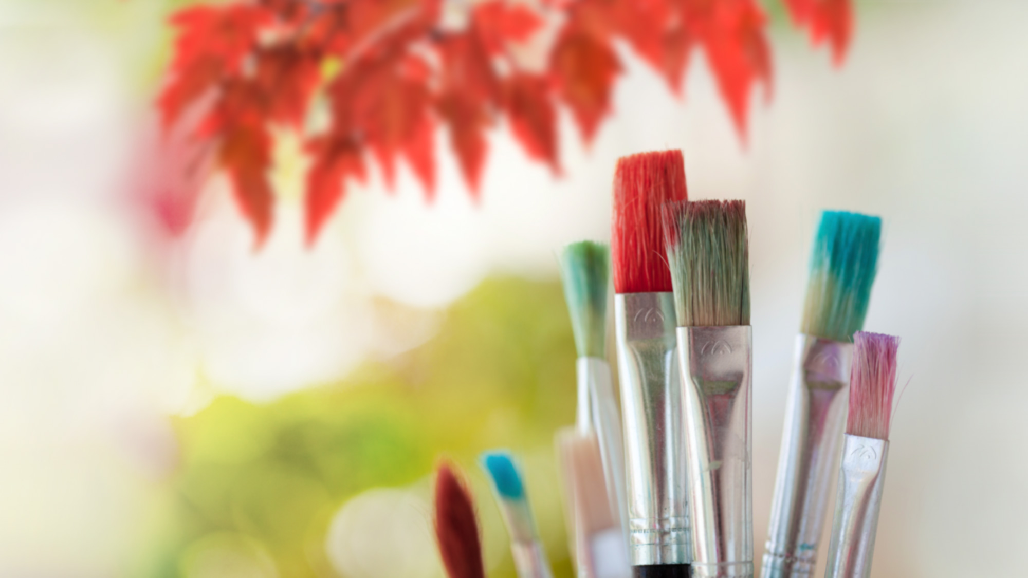 Paint brushes with our logo, maple tree in background